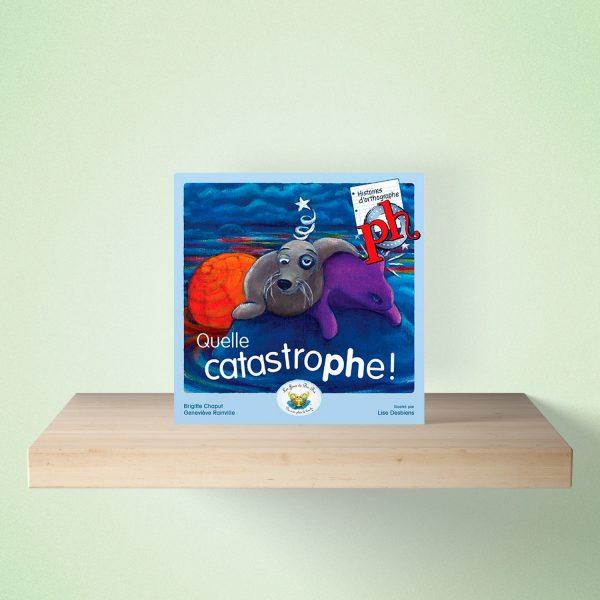 mock up livre catastrophe 600x600 - HISTOIRES d'orthographe - Quelle catastrophe